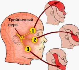 Иннервация тройничного нерва