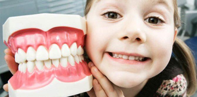 Количество молочных зубов у ребенка
