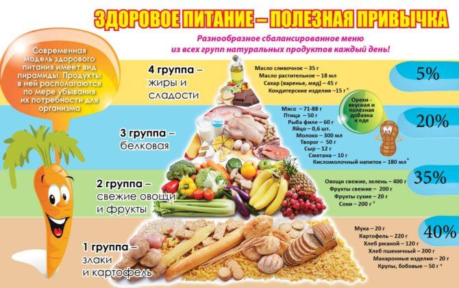 Пирамида правильного питания для детей и взрослых