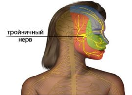 Расположение тройничного нерва