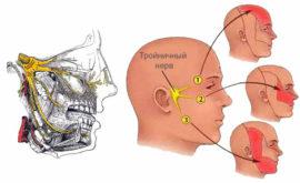 Схема тройничного нерва