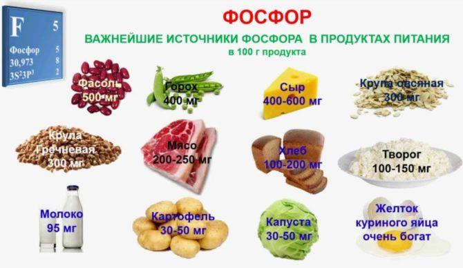 Содержание фосфора в продуктах