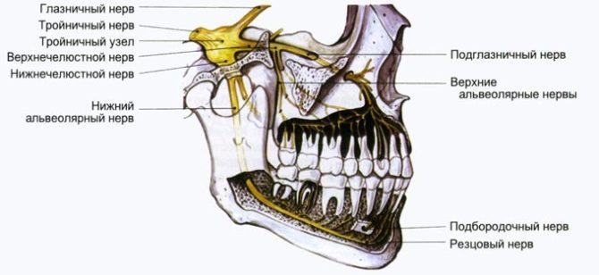 Болит десна на месте давно удаленного зуба