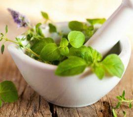 Отвары из аптечных трав от сиаладенита